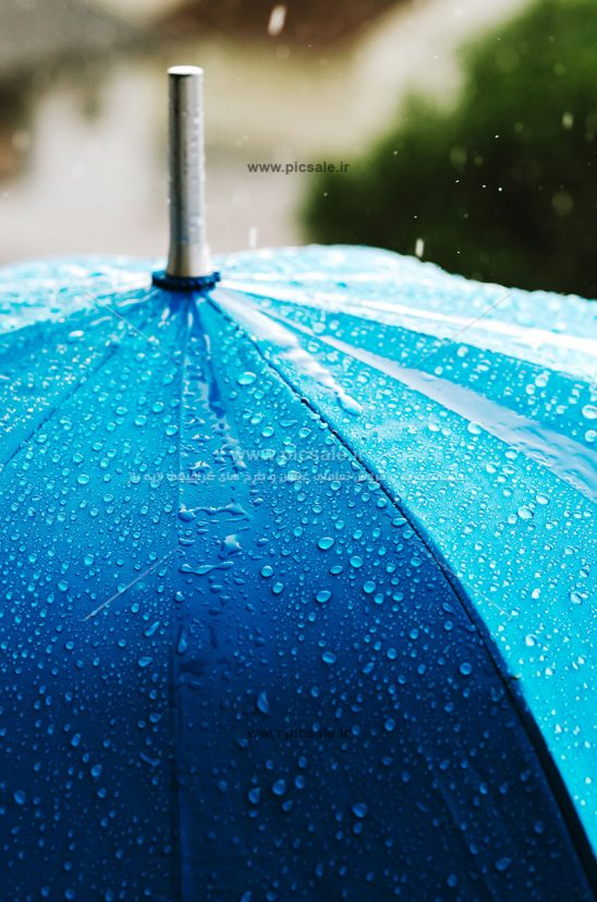 00215 548x827 - چتر آبی و باران