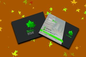 noke cards 300x200 - کارت ویزیت