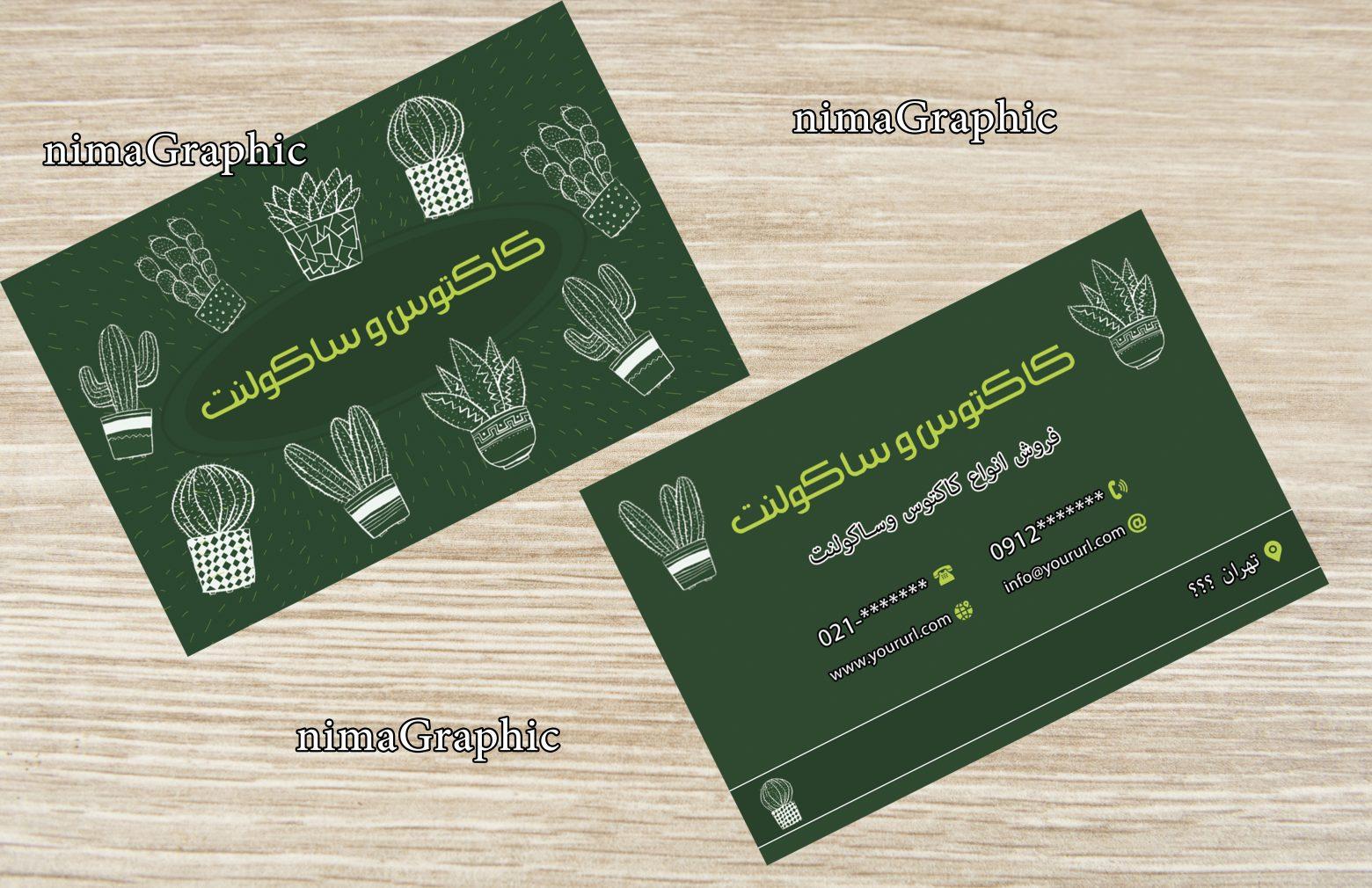 75016 1560x1010 - کارت ویزیت لایه باز کاکتوس و ساکولنت