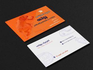72 300x225 - کارت ویزیت دامپزشکی