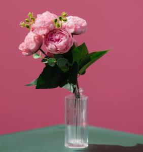 1231221 282x300 - عکس با کیفیت گل رز درون فنجون
