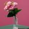 عکس با کیفیت گل رز درون فنجون