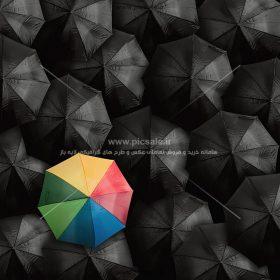 00256 280x280 - چترهای مشکی / سیاه و رنگی