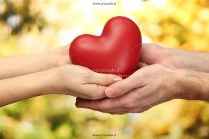 0010132 300x200 - قلب قرمز عاشقانه