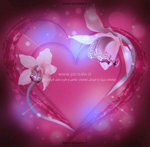 001045 300x294 - قلب عاشقانه