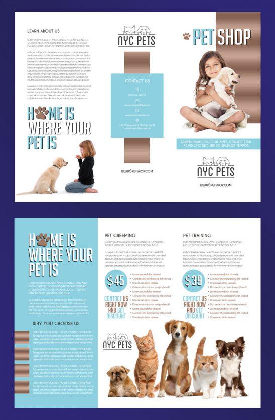 p325 548x838 - لایه باز بروشور سه لت حیوانات خانگی و دامپزشکی سگ و گربه