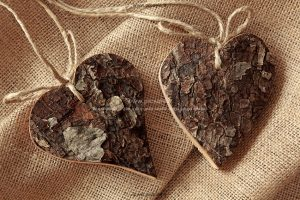 00876 300x200 - قلب های چوبی عاشقانه