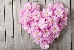 0010102 300x201 - قلب با گلهای زیبا