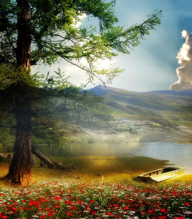 تصاویر رویایی از طبیعت بسیار زیبا - پیکسیل; دانلود، خرید و فروش ...