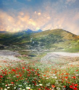 01170s 263x300 - تصاویر رویایی از طبیعت بسیار زیبا